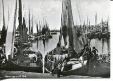 UK.195